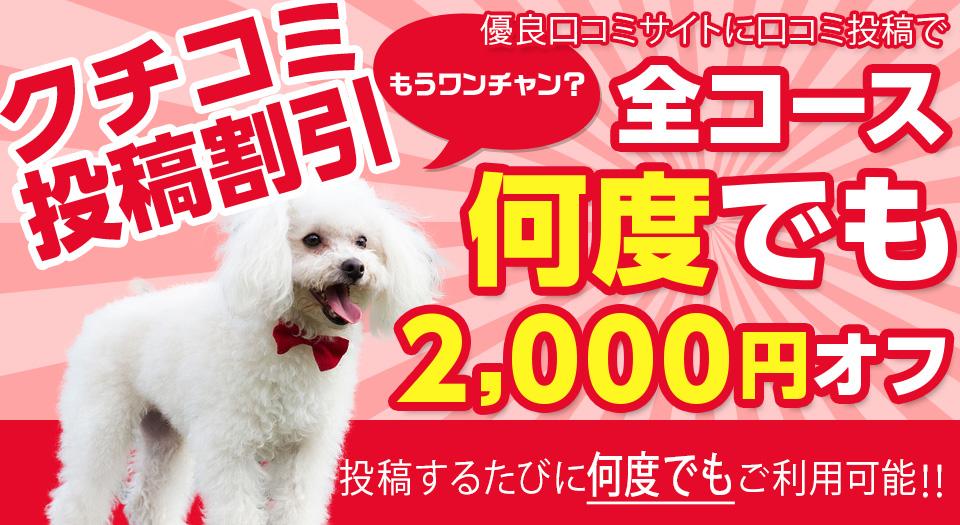 口コミ投稿割引2000円オフ