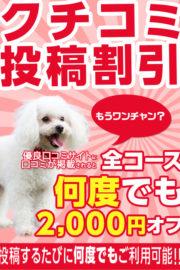口コミ投稿2000円オフ